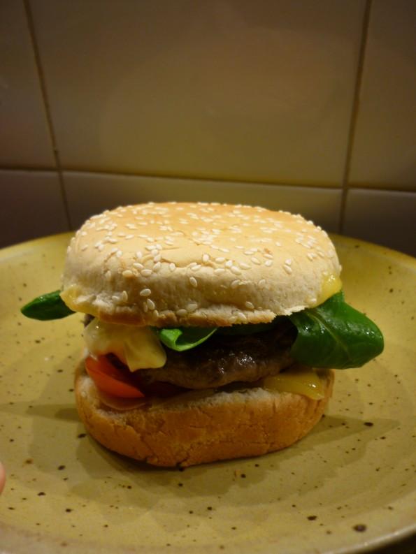 Hamburger (5)